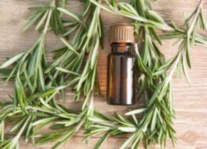 huile essentielle estragon douleurs menstruelles