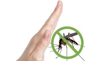 eloigner-les-moustiques